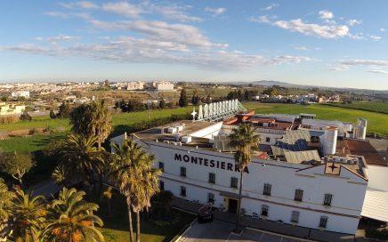 Visitas Montesierra en jerez y jabugo